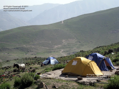 Camping tent Damavand Base Camp