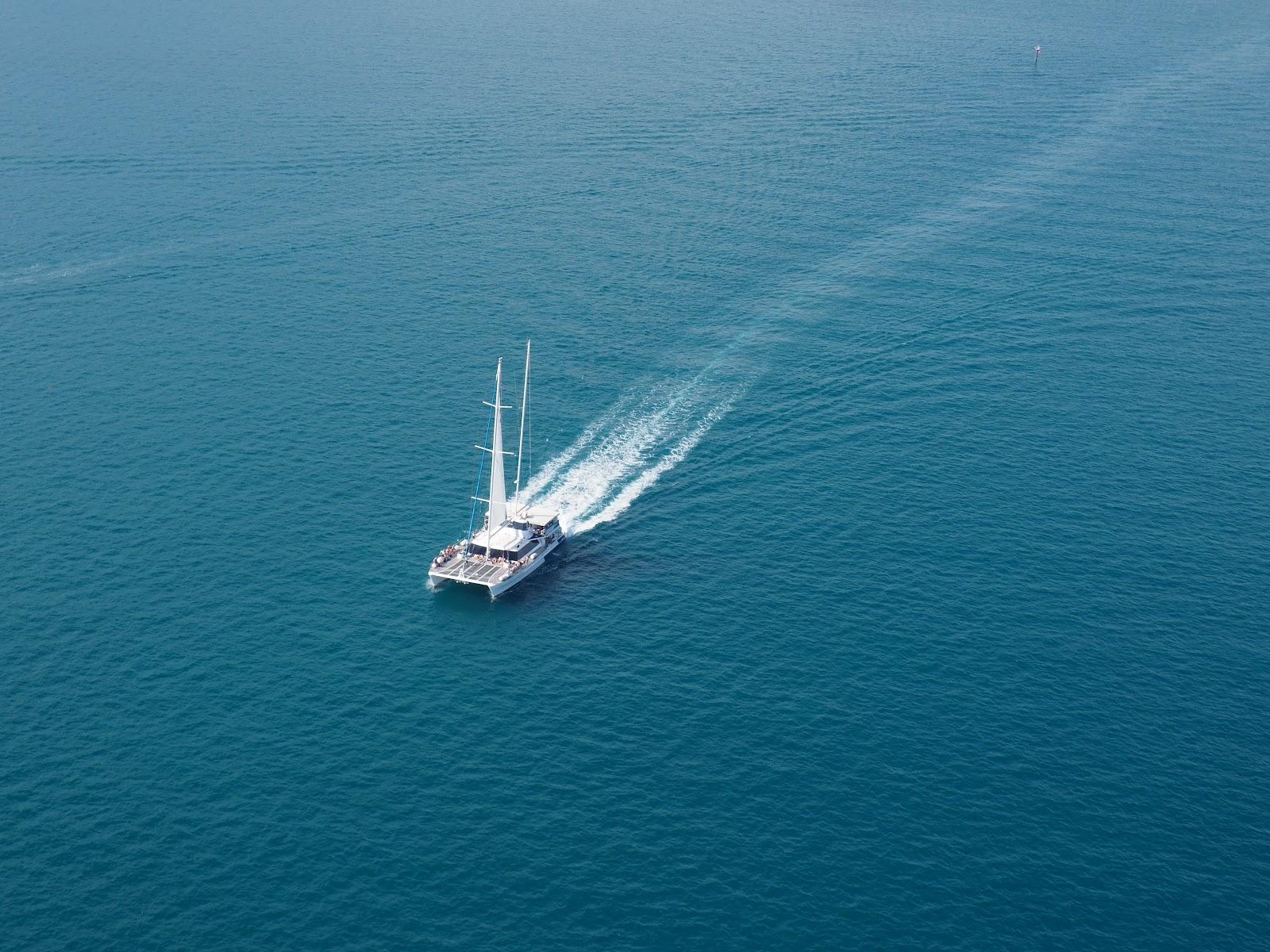 cruising the ocean