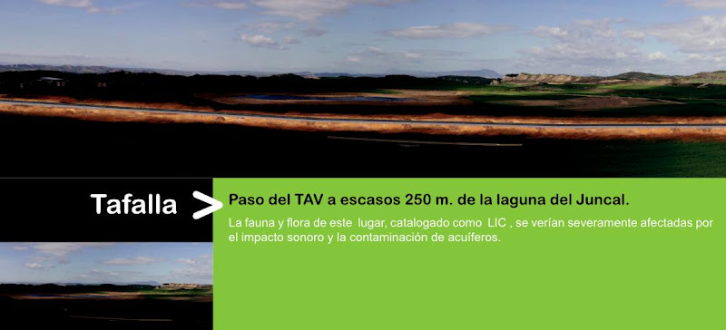 Impacto del TAV en Tafalla (Laguna del Juncal), por AHT Gelditu Elkarlana
