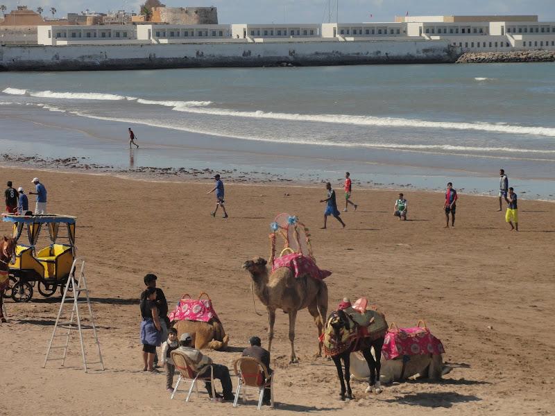 marrocos - Passeando por Marrocos... - Página 6 DSC08958