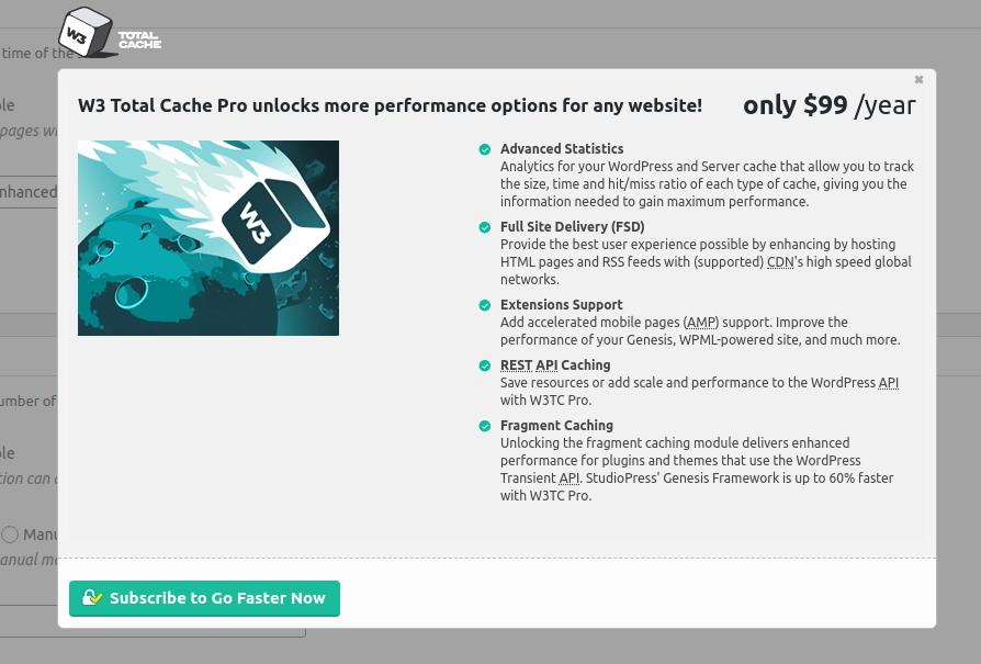 w3 total cache wordpress cache plugin pricing