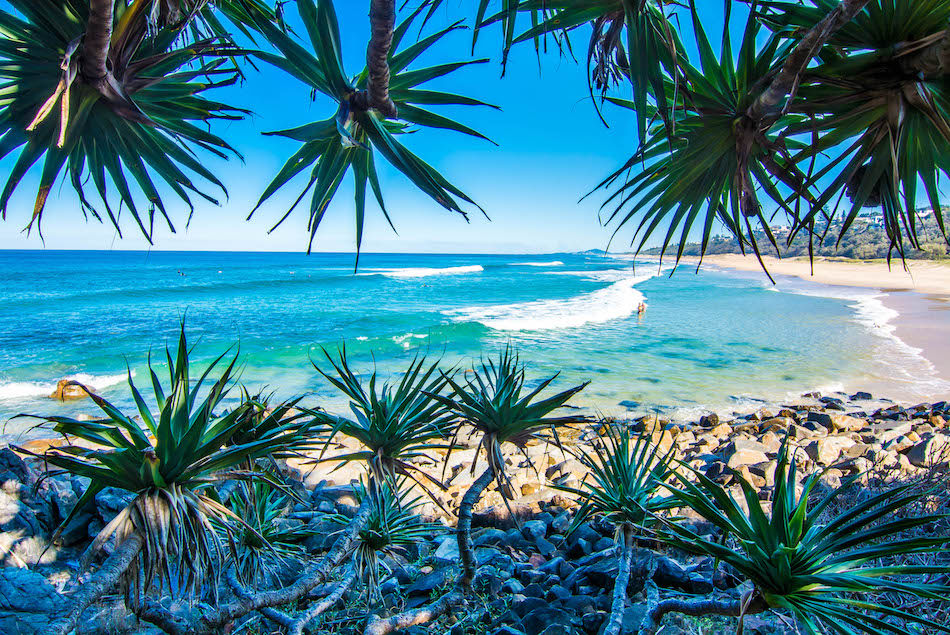 Sunshine Beach- Noosa, Queensland