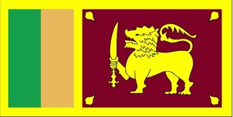Carroll Bryant: Flag of Sri Lanka