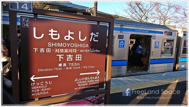 新倉山淺間公園10.JPG