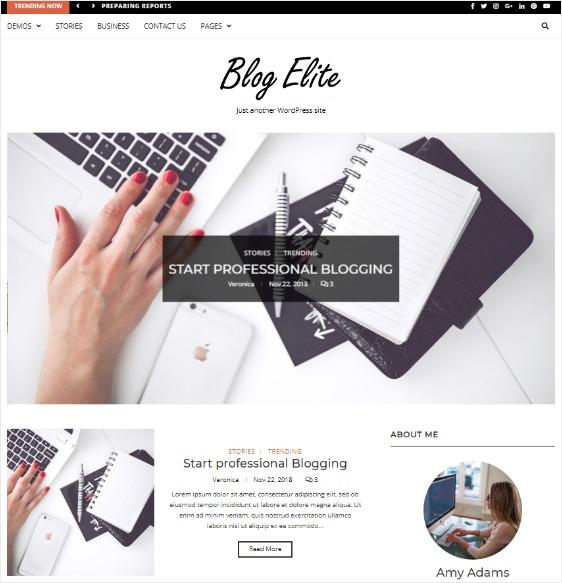 Blog Elite Free WordPress Theme