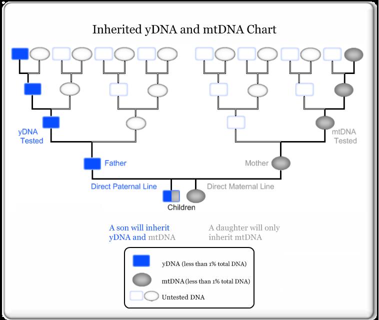 DiagramDescription automatically generated
