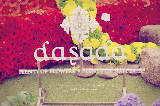 dasada