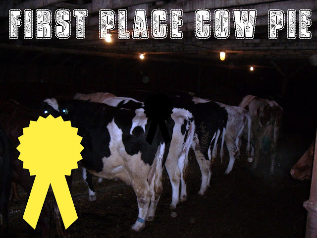 First Place Cow Pie Award!