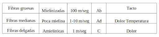 tabla correspondiente a Nota sobre corrientes TENS