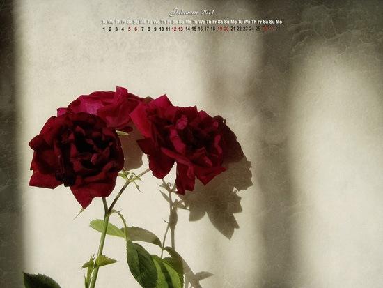 February-Calendar-banner