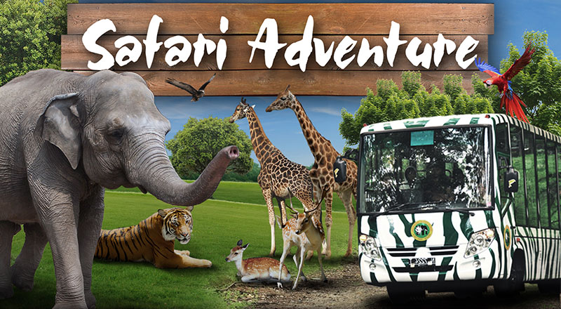 Taman-Safari-Prigen.jpg