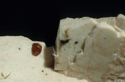 Granate sobre ortosa
