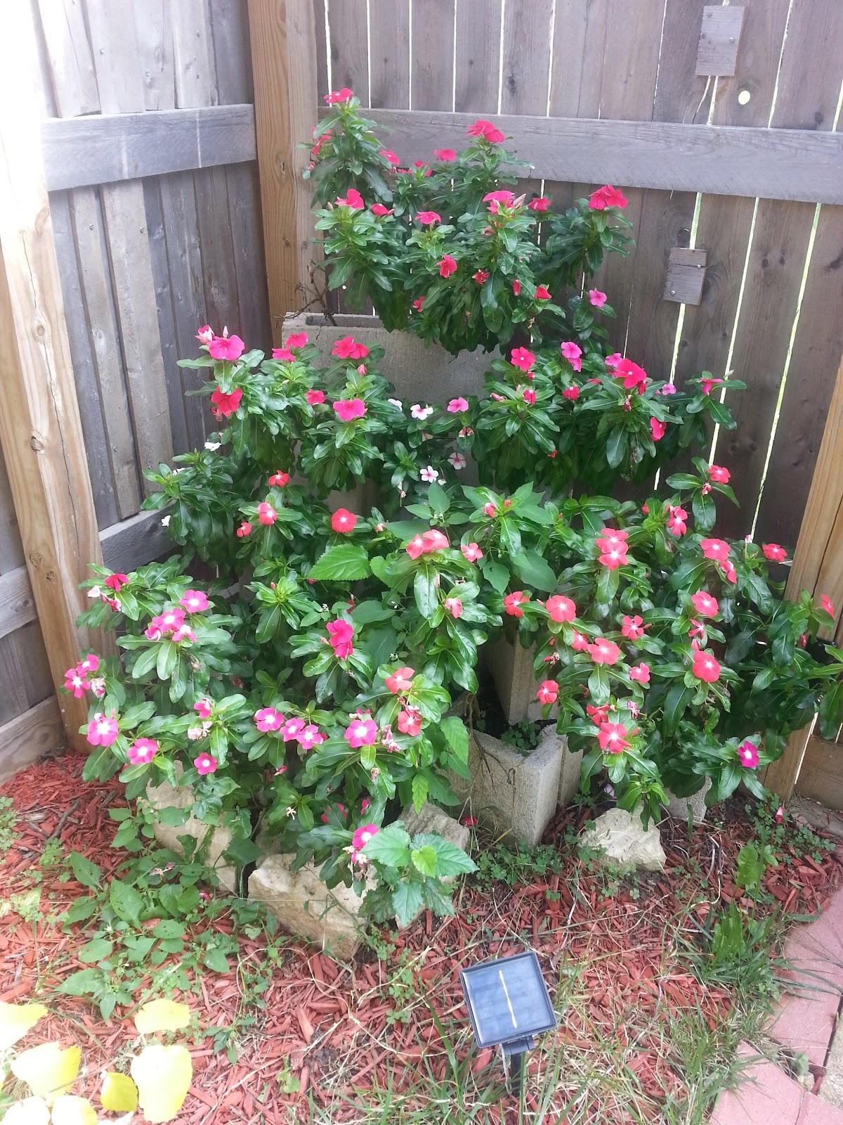 cinderblock garden picture