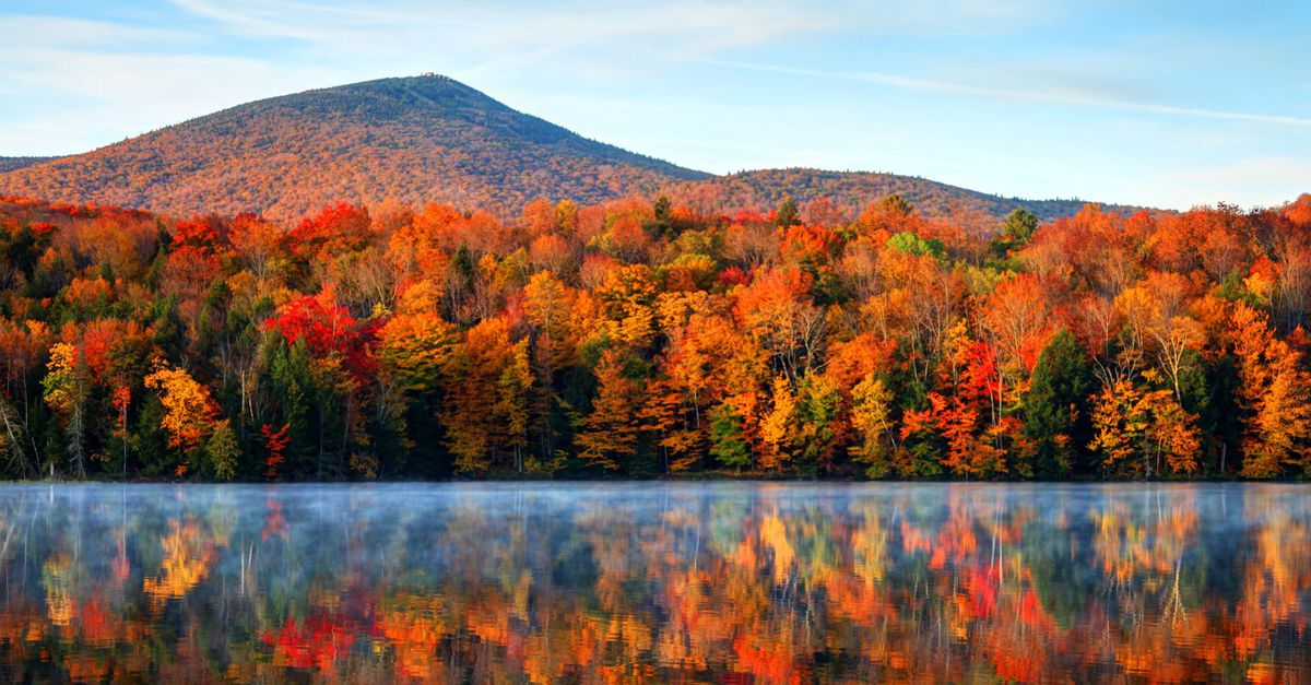 Image result for vt fall foliage