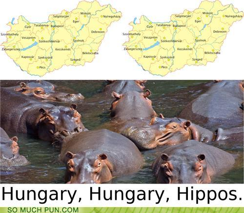 photo of two maps of Hungry and a group of hippos: Hungry,Hungry,hippos
