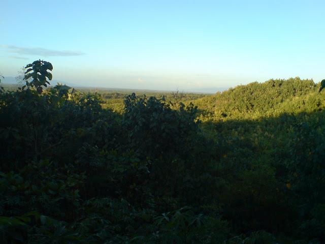 Landscape View Arround