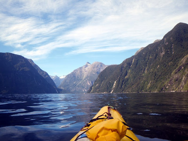 milford sound kayaking