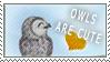 https://lh4.googleusercontent.com/_pKEqhq77o9U/TdeG9FLEj6I/AAAAAAAAD24/Lv_yE_6vI_U/Owls_are_cute_by_tamystock.jpg