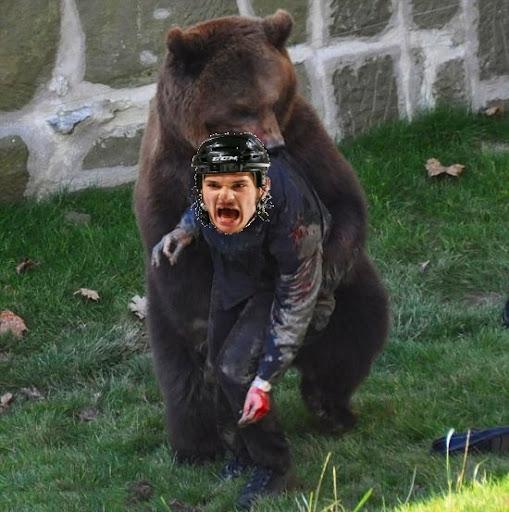Carcillo bear