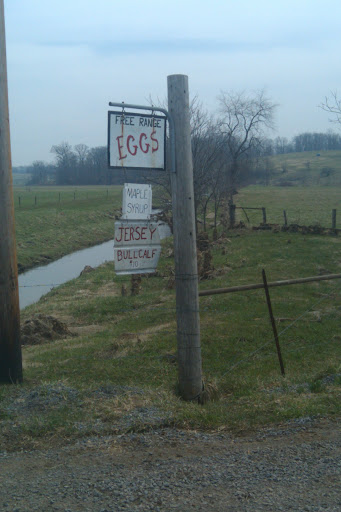 "On my drive home from Holmes County, Ohio I saw this sign, a squirrel told me it says ""Simplicity"""