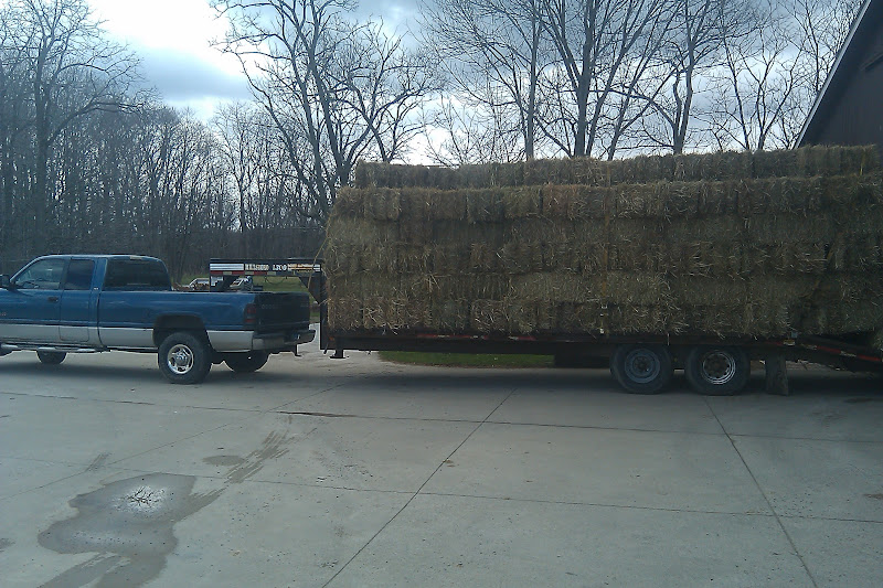 A load of timothy hay I delivered to a horse farm in the Strongsville, Ohio Metroparks this week.  There are 255 bales on this load.