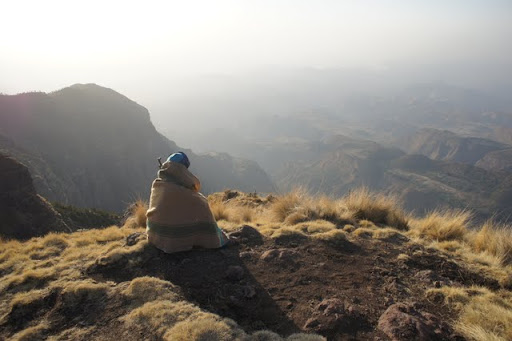 Simien Mountains Scout