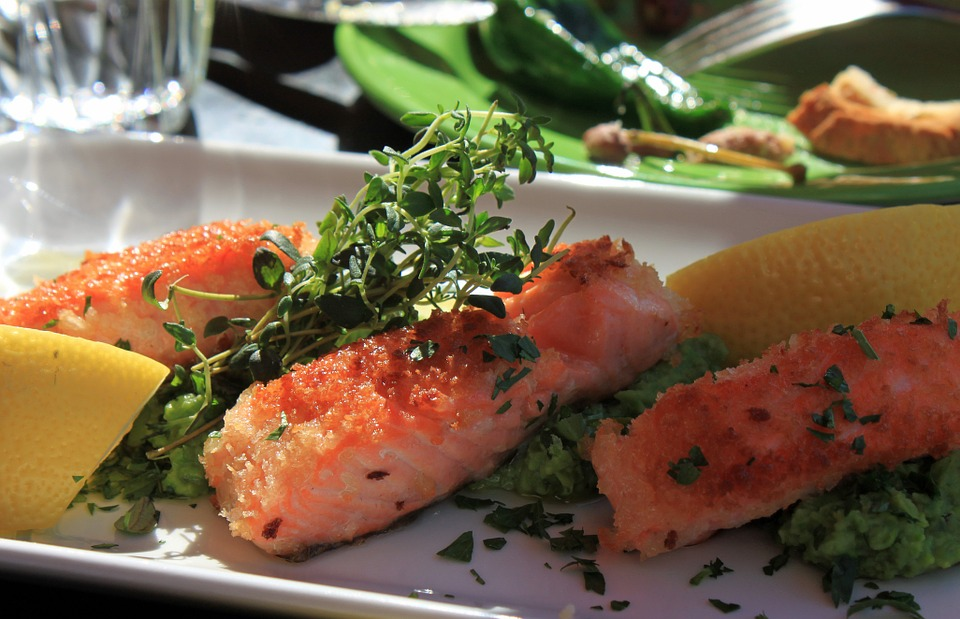 Fish, Salmon, Eat, Food, ...