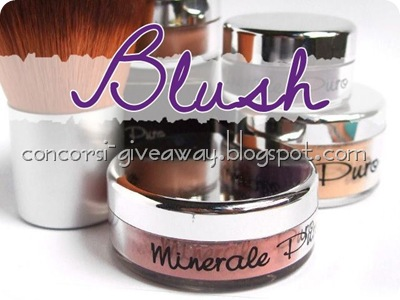 Giveaway-make-up-minerale-minerale-puro-blush-1