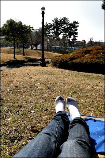 Life in Jeju 58 ปิกนิคเล็กๆในสวน กับรอวันย้ายห้อง