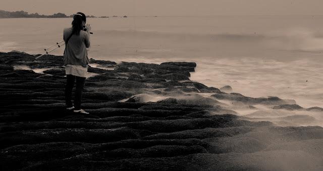 泛黃的老梅清晨