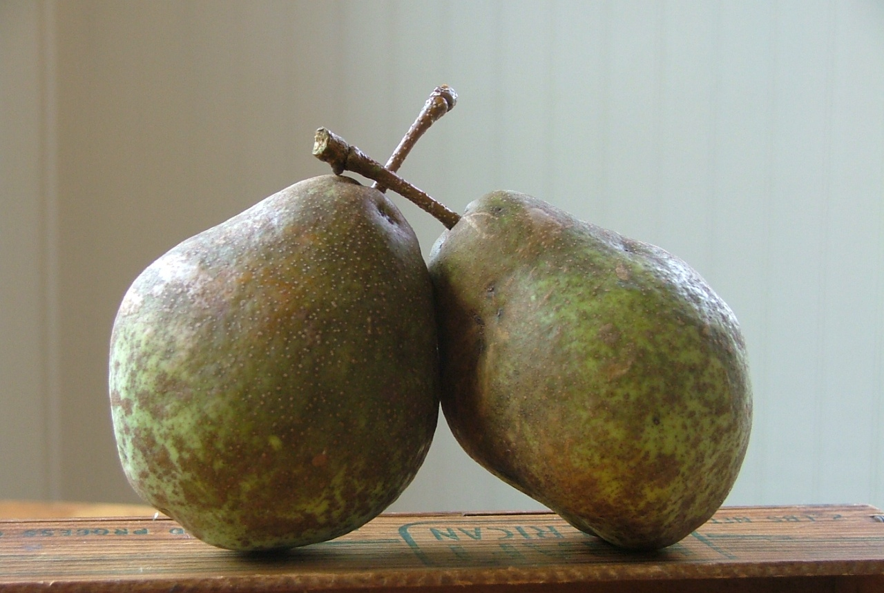 quite the pear...