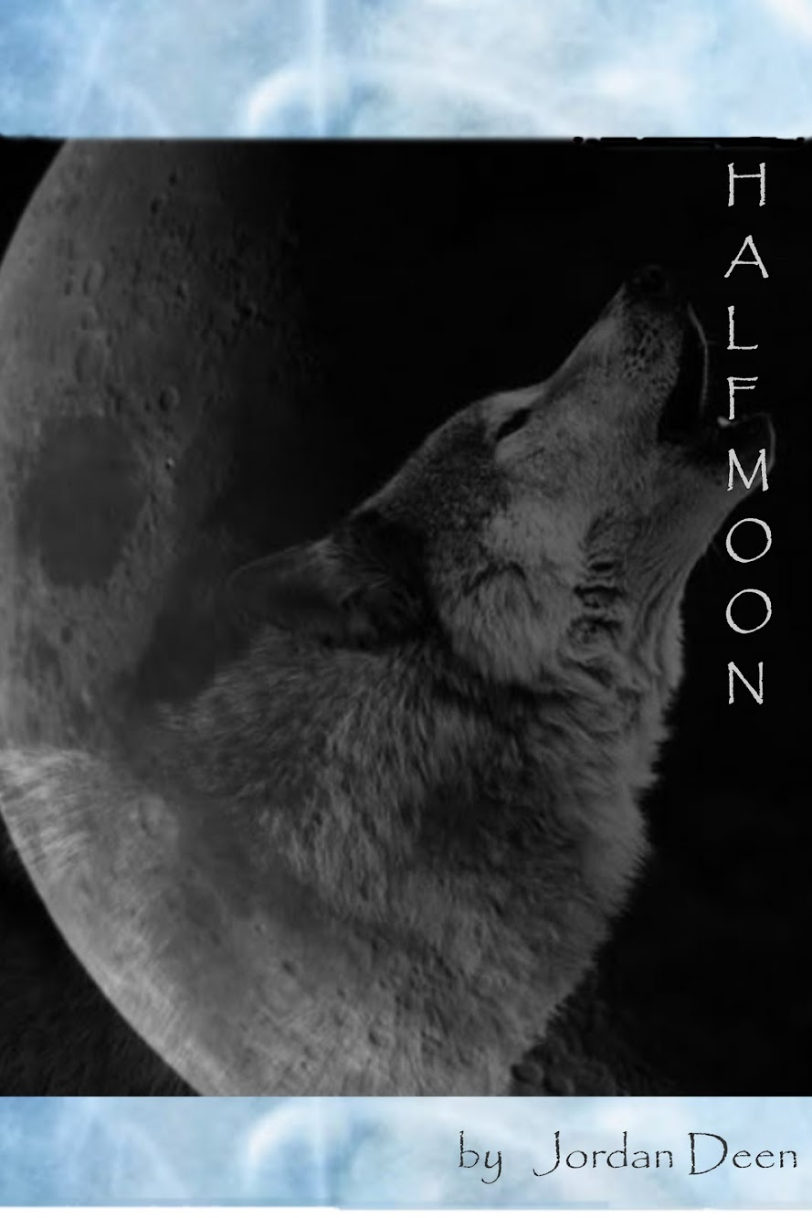 Half Moon Cover Reveal and Scavenger Hunt