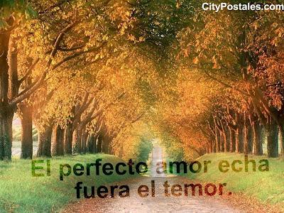 El perfecto amor echa fuera el temor