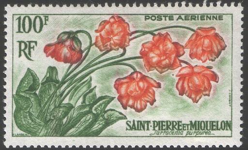 saintpierre_1962.jpg