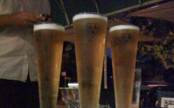 1842 beer