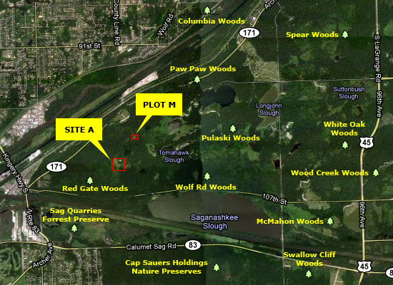 Site A and Plot M