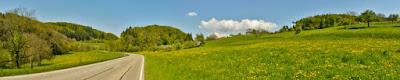 Saftig grüne Wiesen und blauer Himmel