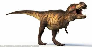 Image result for T-rex