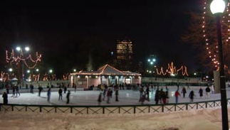 Frog Pond Ice Skating