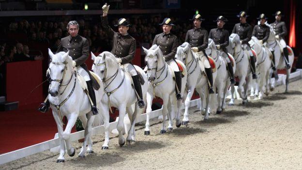 Испанская школы верховой езды