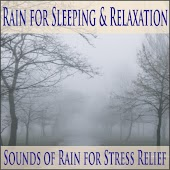 60 Minutes of Rain for Stress Relief