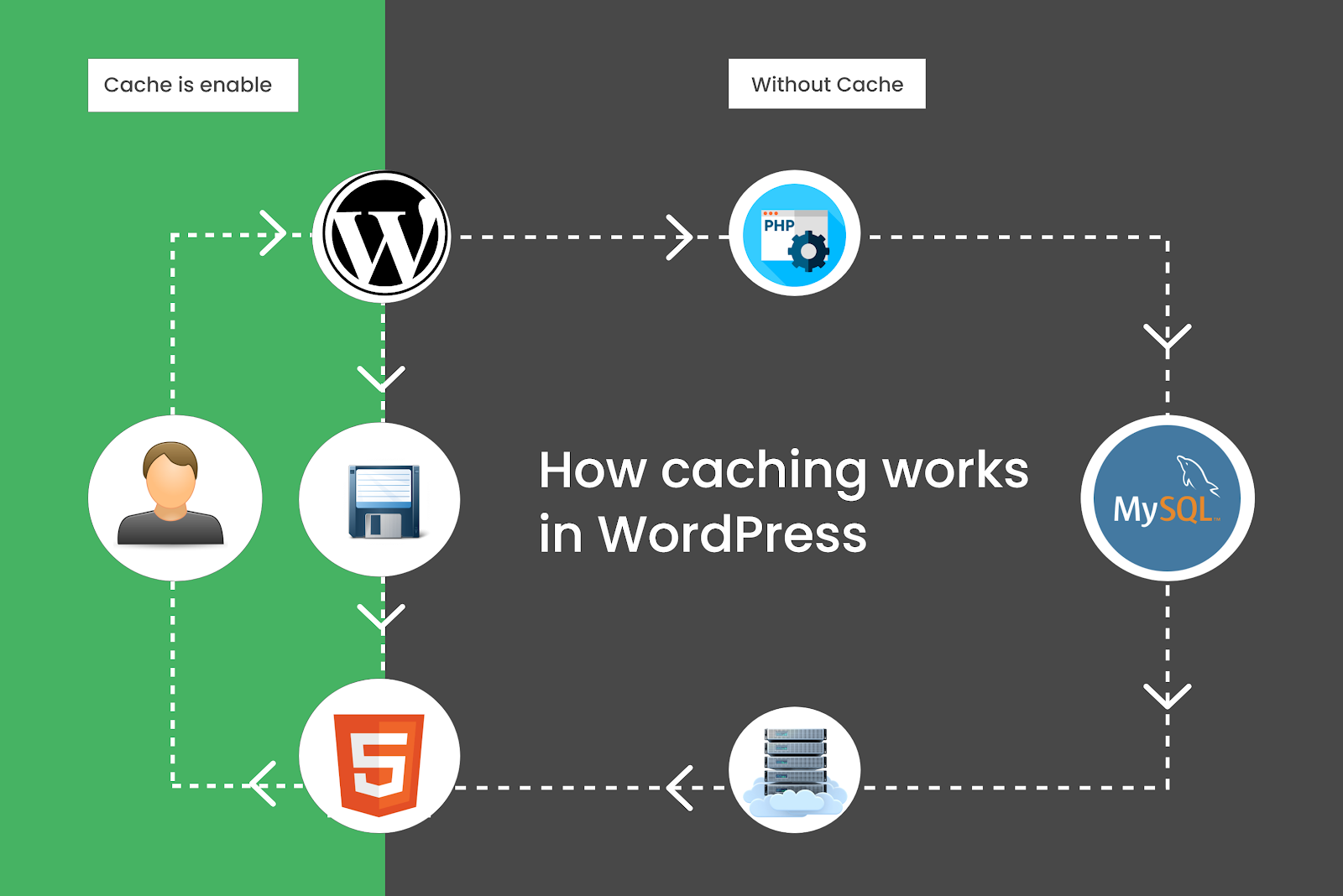The Science Behind WordPress Caching