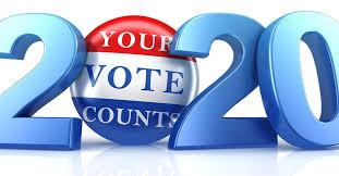 Vote 2020 | Auburn Examiner