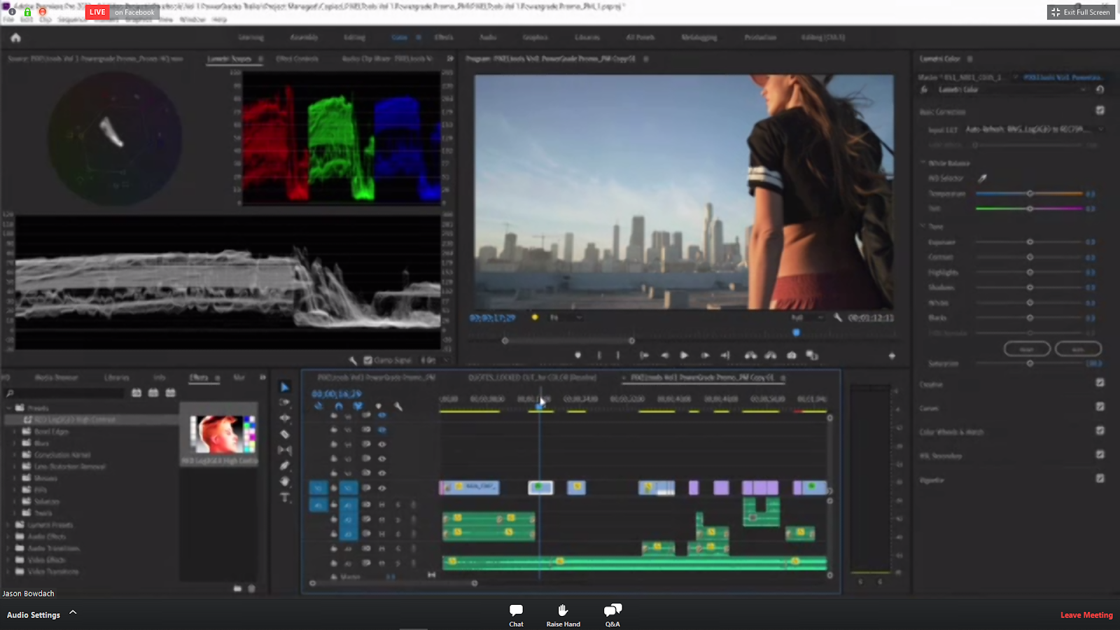 Color Correction for Film and Television warm summer scene.