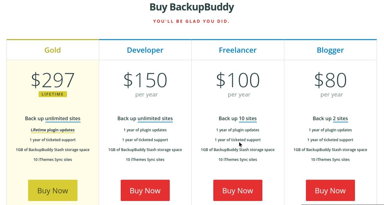 BackupBuddy package