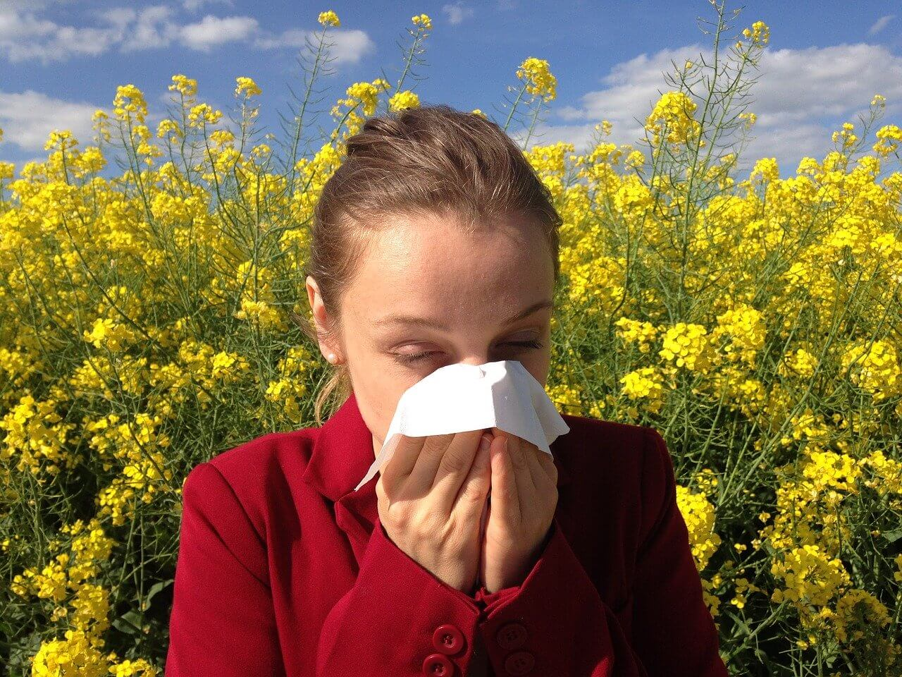 take care of your allergies