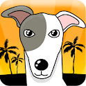 Greyhound Racer apk