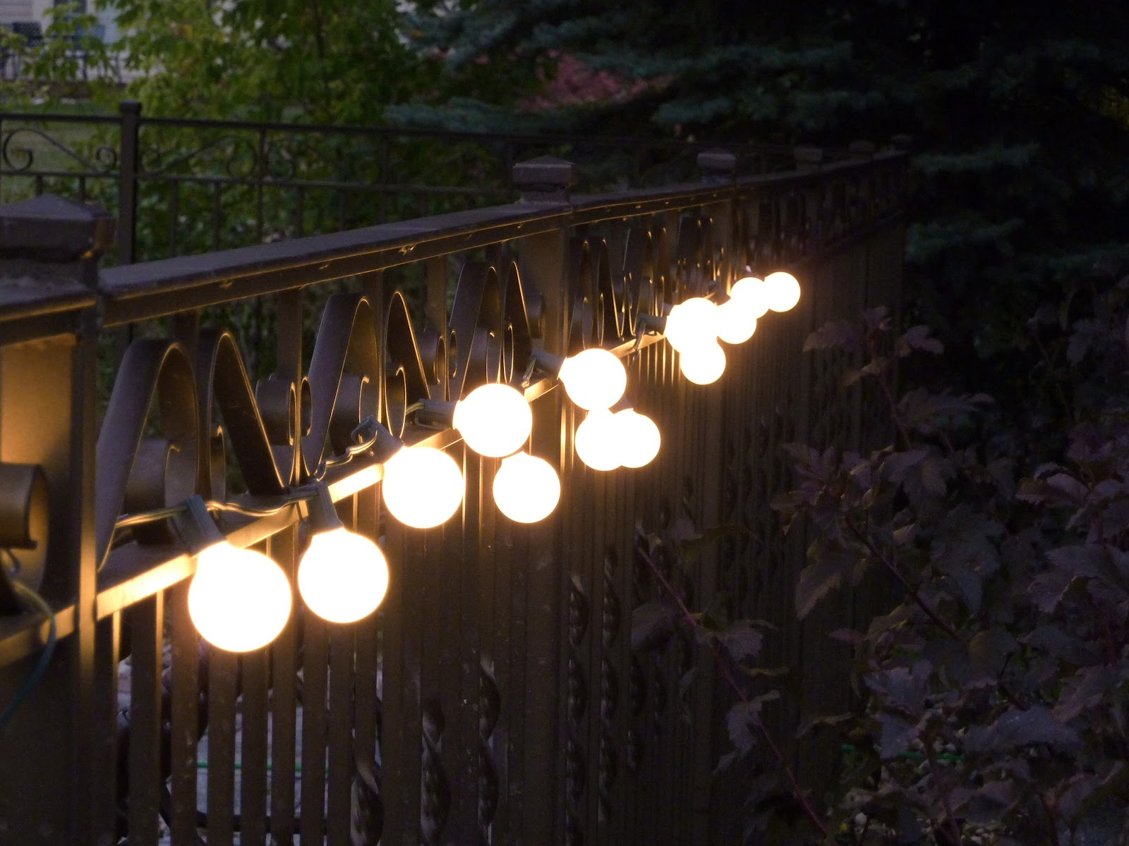 Globe Patio Lights along Fence