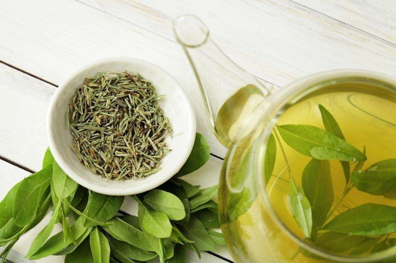 công dụng trà xanh và cách sử dụng hợp lý