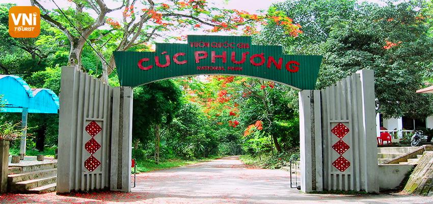 cuc phuong national park ninh binh, vietnam